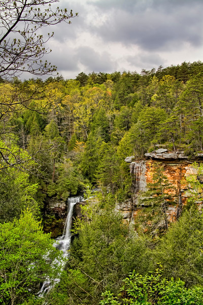 """Piney Creek Falls""<br /> Falls Creek Falls State Park"