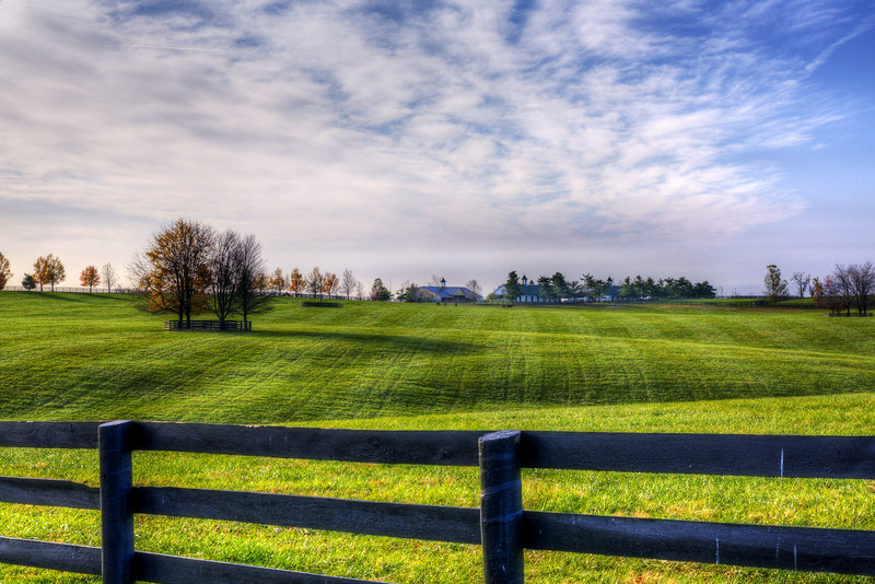 Horse Farm - Early Morning in November<br /> Lexington, KY