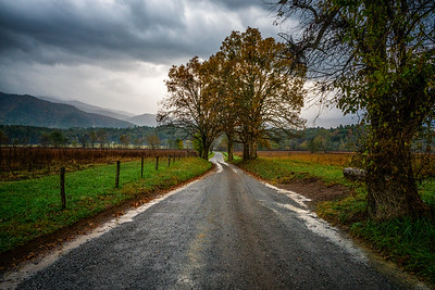 USA, Tennessee., Cades Cove, Scenic autumn landscape of Sparks Lane Great Smoky Mountains National Park.