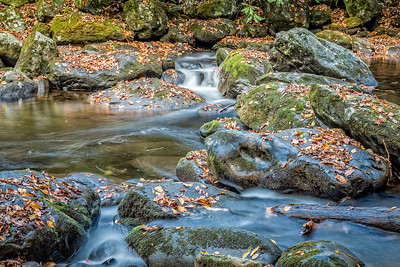 USA, Tennessee. Long exposure of rocky mountain stream with moss covered rocks, silky water, rapids and colorful foliage.