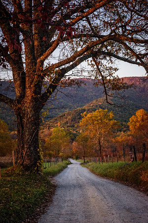 uSA, Tennessee., Cades Cove, A man sitting by the side  of the road watching the golden sunset. Great Smoky Mountains National Park.