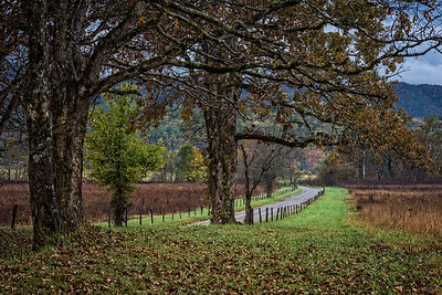 USA, Tennessee., Cades Cove, Scenic autumn landscape of Sparks Lane ,Great Smoky Mountains National Park.