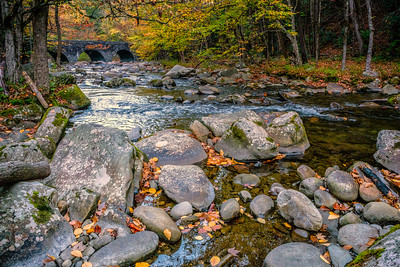 USA, Tennessee. Scenic autumn landscape of rocky mountain stream with bridge and colorful foliage.