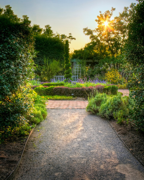 """Sunset at the Arboretum"""