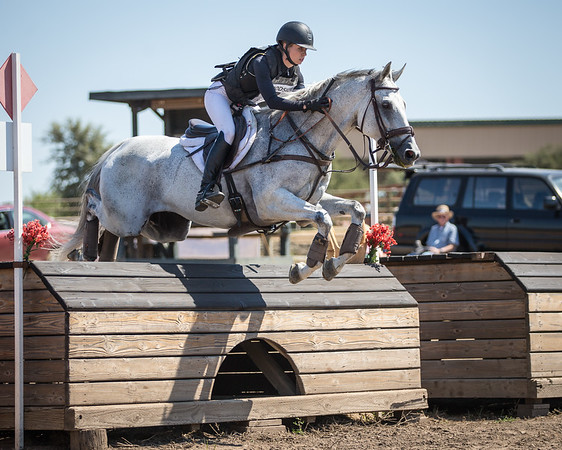 2016 August 12-14 Woodside Horse Trials Alliston Eventing