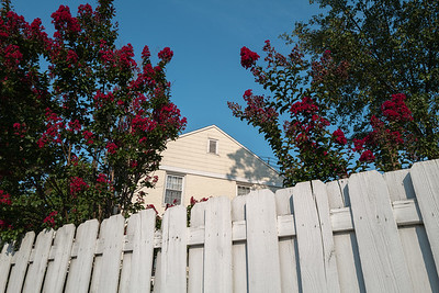 fence flowers house
