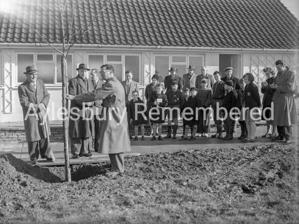 Planting trees at Alfred Rose Park, Feb 16th 1957