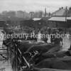 Cattle Market 1946