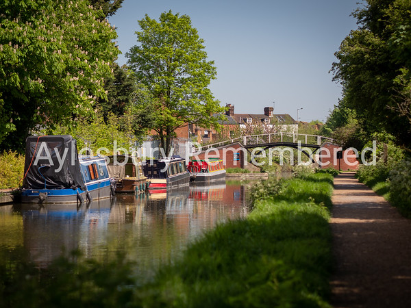 Canal near Highbridge, May 6th 2018