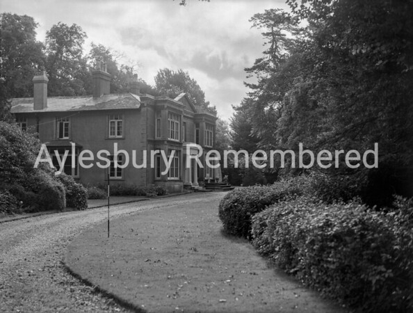 Walton Grove, Aug 1951