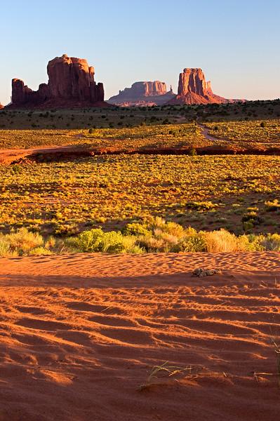 Dune droppings