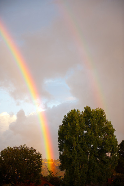 double rainbow reduced