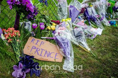 Prince04©UTM2016