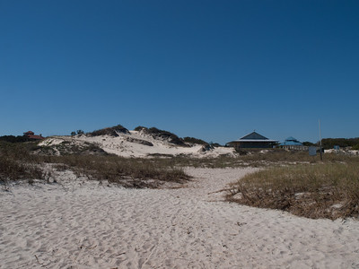 Dunes above American Beach, Florida