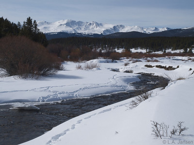 Winter watering hole, Tennessee Pass, near Leadville