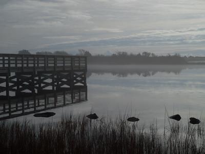 Morris Landing advection fog