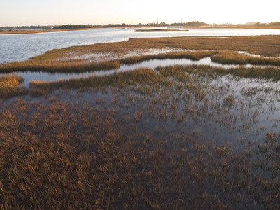 Sound side of Topsail Island