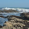 Pismo Beach, CA<br /> (c) Dan Holm