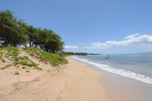 Beach North of Kihei, Maui, Hi
