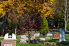 Fall foliage in Forest Hill Cemetery, Ann Arbor, Michigan.<br /> <br /> October 8, 2011