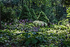 The Benedict Hosta Hillside, Hidden Lake Gardens, Michigan<br /> August 30, 2013