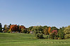 D277-2012 A view of the central meadow.<br /> .<br /> Hidden Lake Gardens, Lenawee County, Michigan<br /> October 4, 2012