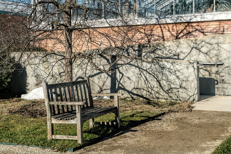Bench in winter, with shadows