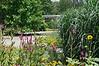 D201-2012 View from the Exhibit Gardens in the direction of the Pavilion in the Gateway Garden.<br /> .<br /> Matthaei Botanical Gardens, Ann Arbor, Michigan.<br /> July 20, 2012.<br /> (nex5n)