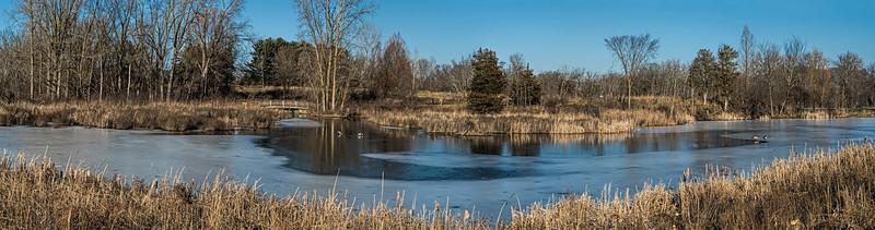 Winter pond panorama