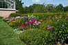 D199-2012 Perennial border plantings<br /> .<br /> Matthaei Botanical Gardens, Ann Arbor, Michigan<br /> July 18, 2012<br /> (nex5n)
