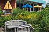 D196-2013<br /> .<br /> Matthaei Botanical Gardens, Ann Arbor<br /> July 15, 2013