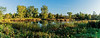 Willow Pond panorama