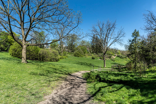 Nichols Arboretum and Dow Prairie - Ann Arbor, Michigan