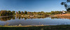 Panorama; Lake at Powell Gardens.