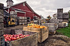 D289-2013  <br /> <br /> Spicer Orchards, Clyde Road, Fenton, Michigan<br /> October 16, 2013