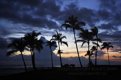 Hawaii sunset silhouette