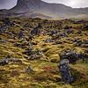 20 Lava Rocks and Moss