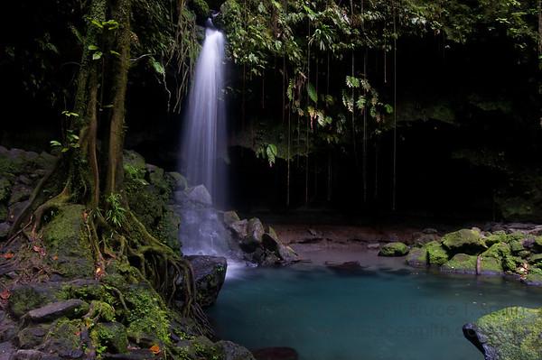 The Emerald Pool, Dominica
