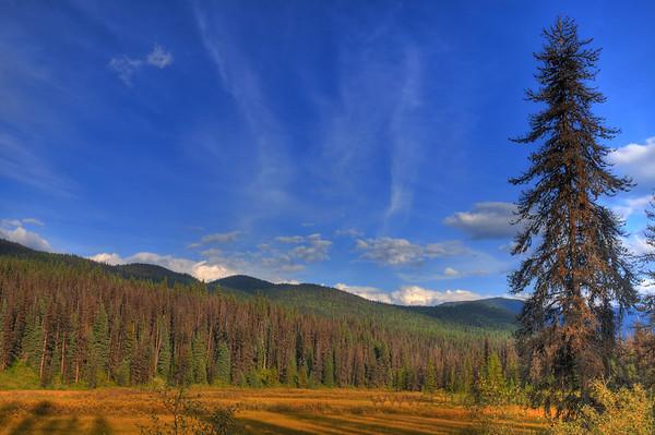 Mountainous valley near Wells, BC