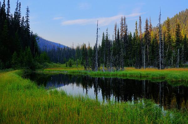 Pond reflection near Devils Lake Creek (Wells / Barkerville) BC