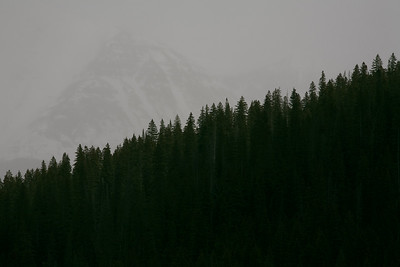 This was shot just outside of Teluride, Col. A sudden snowstorm came through and covered the mountain in the background.