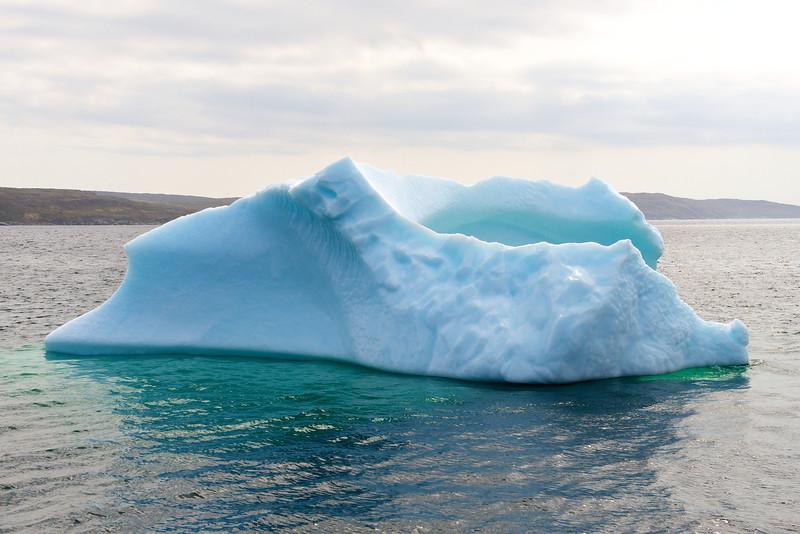 Iceberg - St. Anthony, Newfoundland