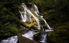 The American Pacific Northwest, Washington