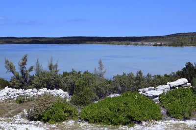 Princess Cays - Inland view of island (March 20, 2014)