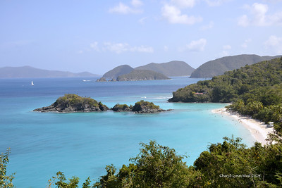 St. Thomas - Scenic view of the beach on St. John's Island (March 22, 2014)