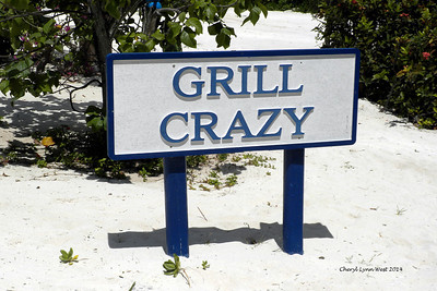 Princess Cays - Grill Crazy buffet (March 20, 2014)