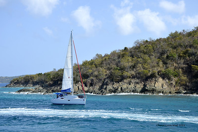 St. Thomas - Sailboat on the trip back to St. Thomas from St. John's Island (March 22, 2014)