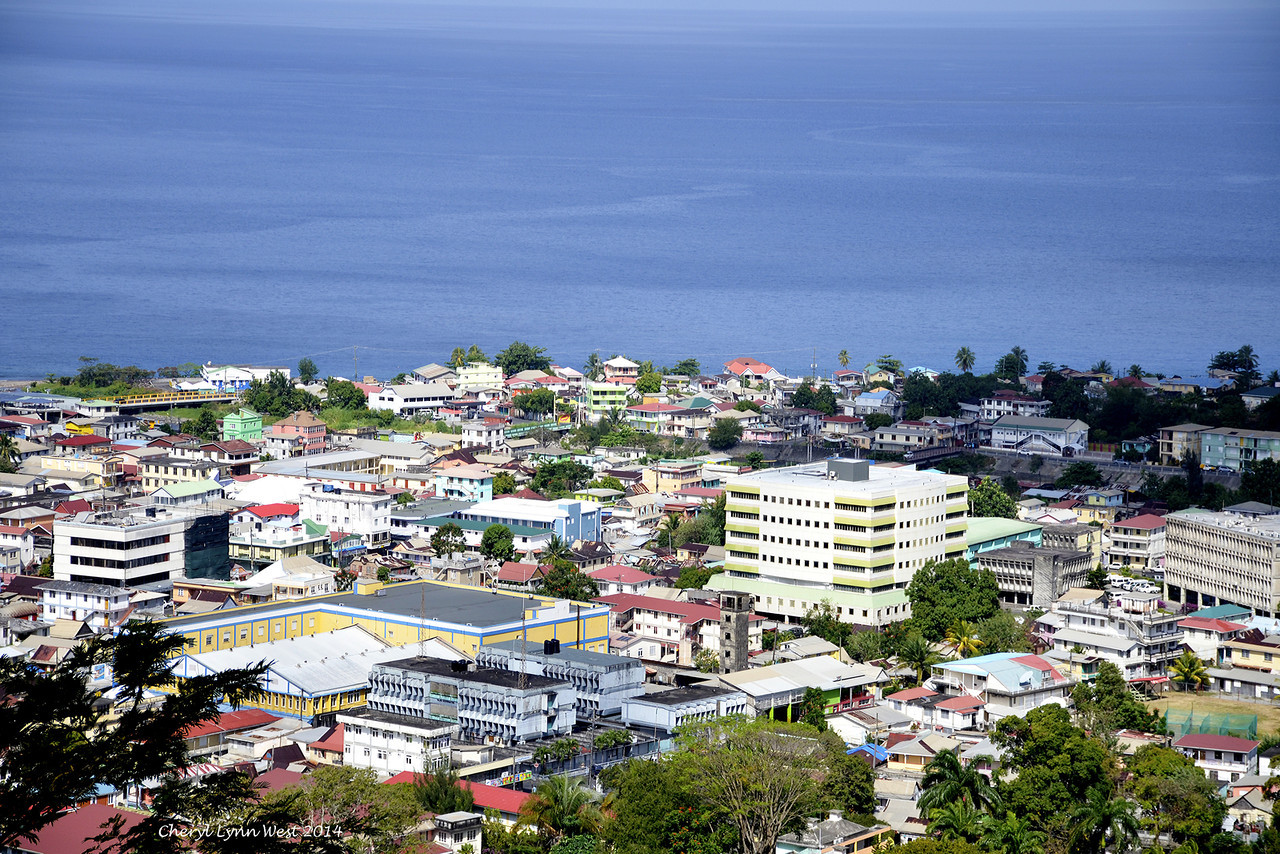 Dominica - View from the hillside on bus tour (March 23, 2014)