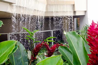 El Yunque Rain Forest