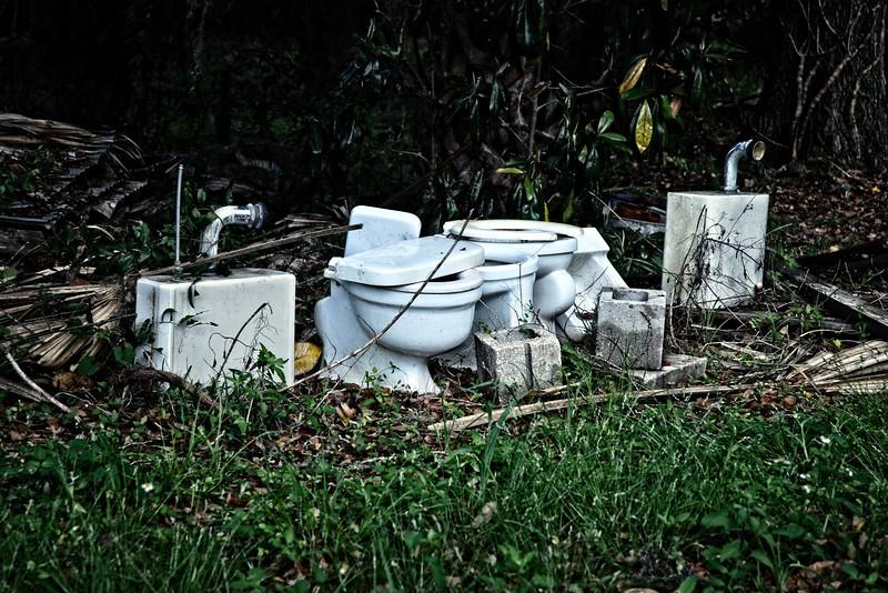 """""""Lawn ornaments"""" in a backyard in Micanopy, FL"""